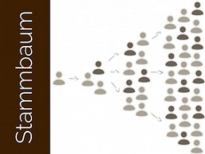 empfehlungsmarketing stammbaum empfehlungsstammbaum - Empfehlungsmarketing Beispiele